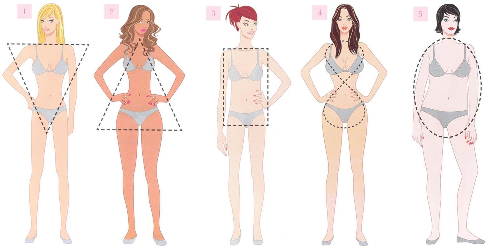 Os tipos de corpos