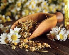 Chá de camomila no cabelo: conheça os seus benefícios