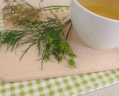 Chá de endro: um aliado para a imunidade e no alívio de cólicas