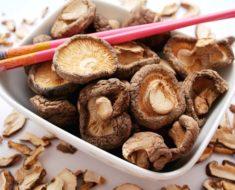 Os benefícios do cogumelo shiitake   Dicas de Mulher